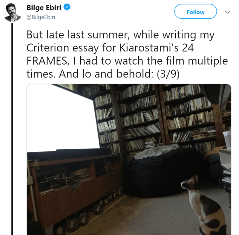 Product - Bilge Ebiri Follow @BilgeEbiri But late last summer, while writing my Criterion essay for Kiarostami's 24 FRAMES, I had to watch the film multiple times. And lo and behold: (3/9)