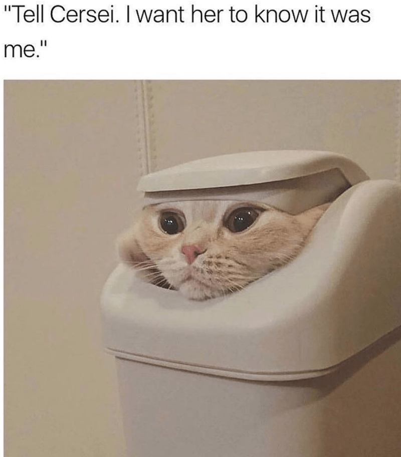 Caturday meme of a cat inside a trashcan looking like Lady Olenna from GoT