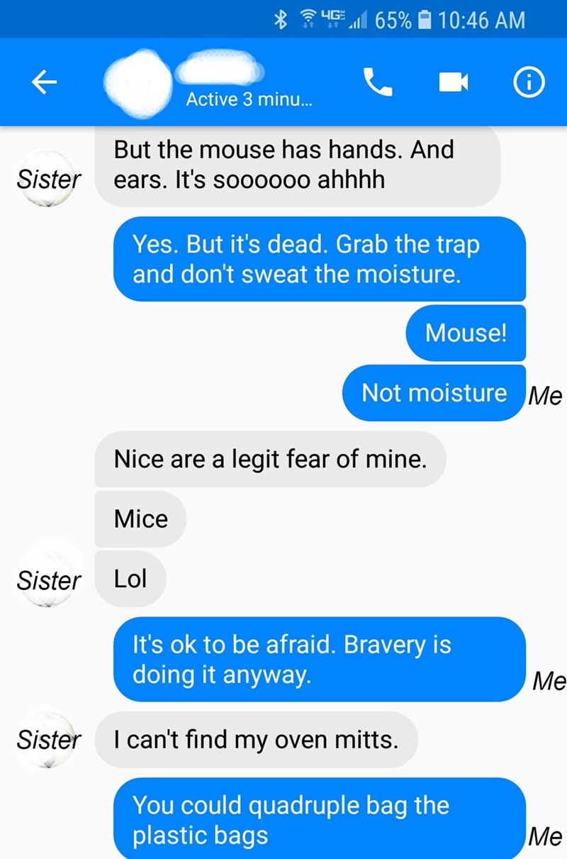 Text - yG 65% 10:46 AM 4t Active 3 minu... But the mouse has hands. And Sister ears. It's soo0000 ahhhh Yes. But it's dead. Grab the trap and don't sweat the moisture. Mouse! Not moisture Me Nice are a legit fear of mine. Mice Lol Sister It's ok to be afraid. Bravery is doing it anyway. Me I can't find my oven mitts. Sister You could quadruple bag the plastic bags Ме