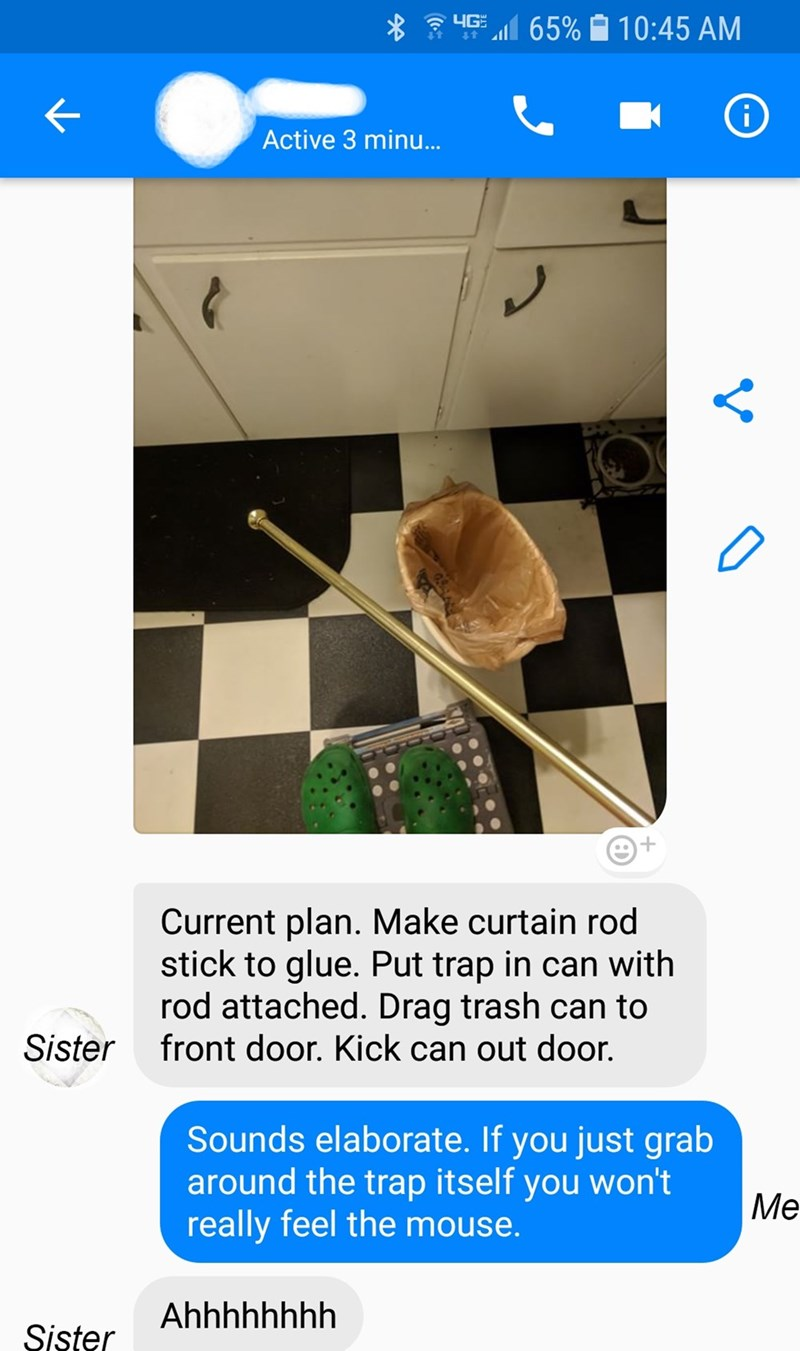 Line - yG 65% 10:45 AM Active 3 minu.. Current plan. Make curtain rod stick to glue. Put trap in can with rod attached. Drag trash can to front door. Kick can out door. Sister Sounds elaborate. If you just grab around the trap itself really feel the mouse. won't you Me Ahhhhhhhh Sister
