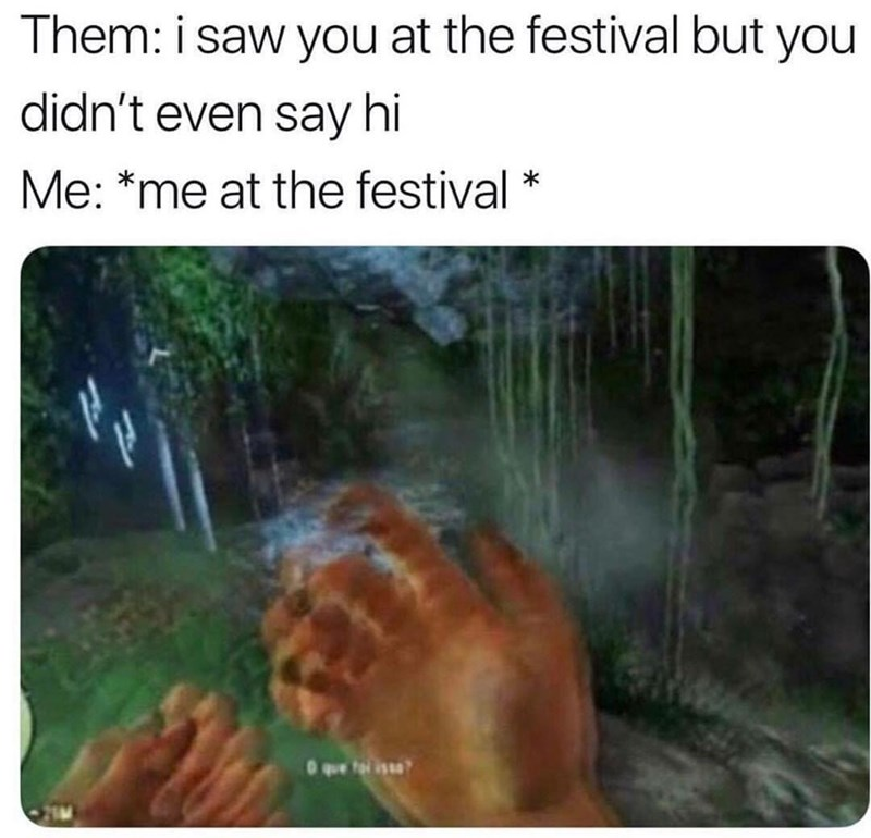 Nature - Them: i saw you at the festival but you didn't even say hi Me: *me at the festival 0 que
