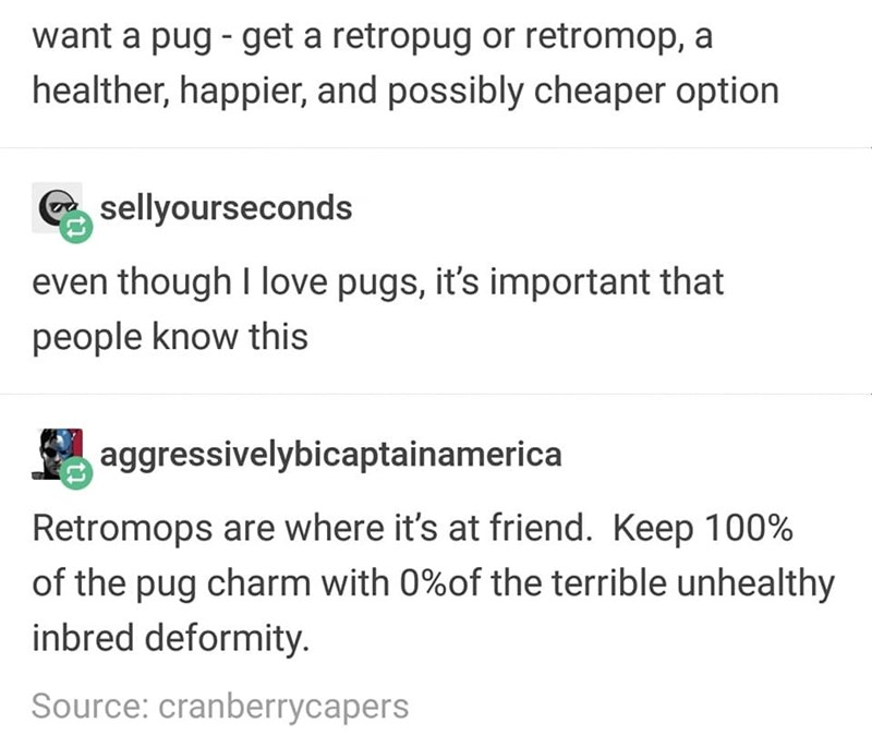 Text - want a pug get a retropug or retromop, a healther, happier, and possibly cheaper option sellyourseconds even though I love pugs, it's important that people know this aggressivelybicaptainamerica Retromops are where it's at friend. Keep 100% of the pug charm with 0%of the terrible unhealthy inbred deformity Source: cranberrycapers