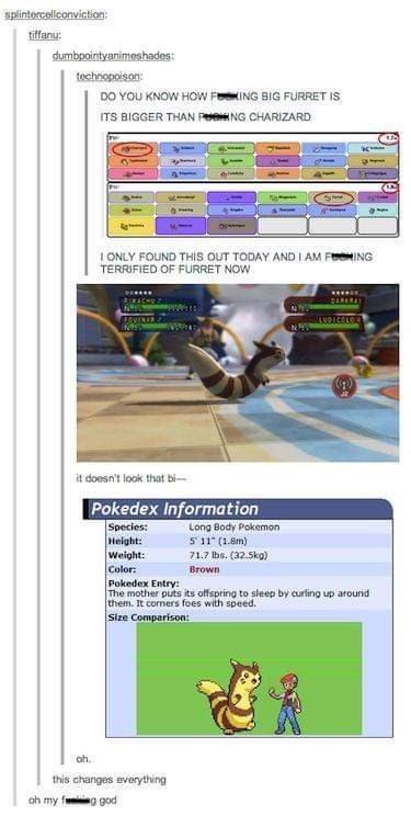 Tumblr thread about finding out a ferret looking Pokemon is actually huge