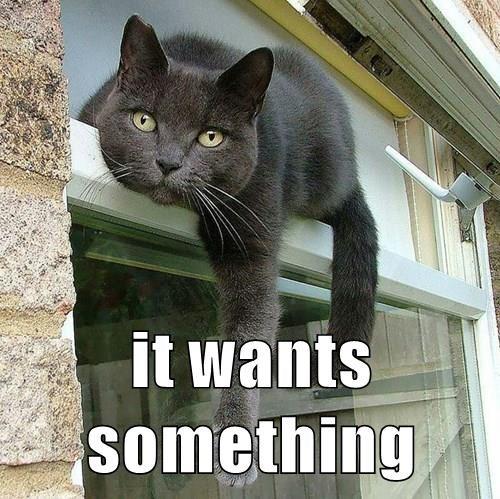It wants something