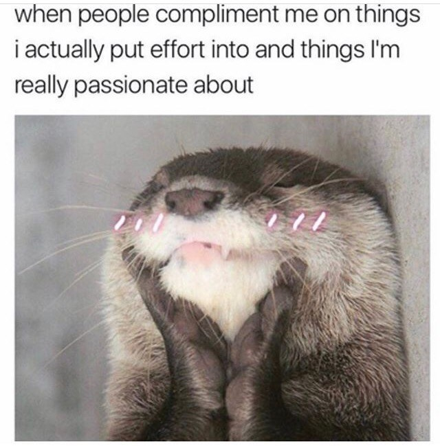 wholesome meme about getting complimented on things you worked hard on