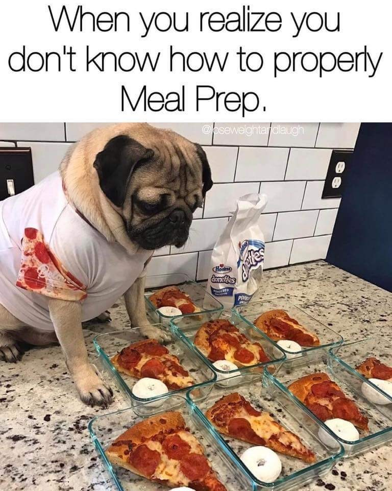 wholesome meme of a pug trying to meal prep