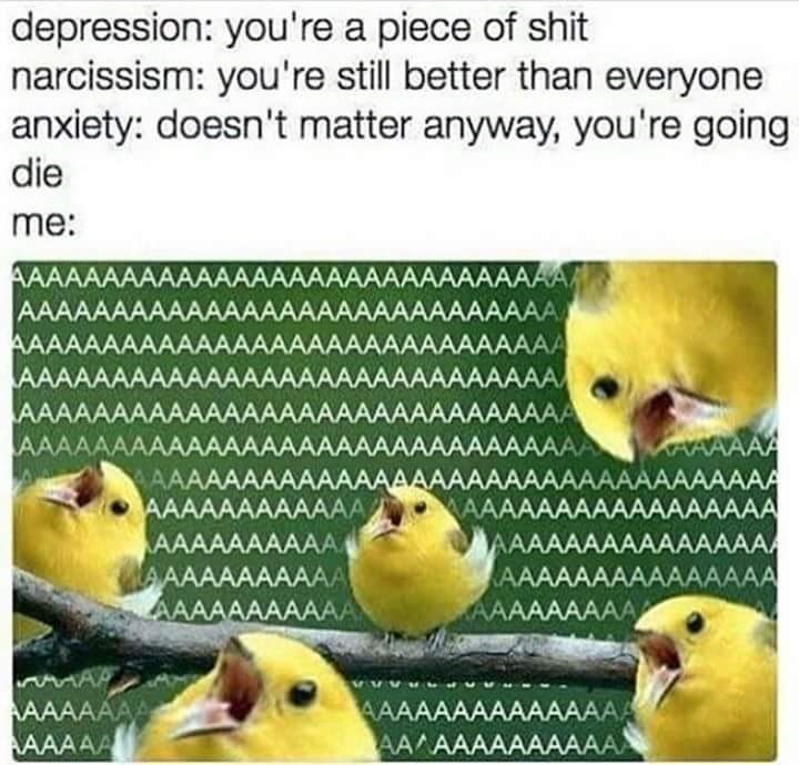 meme about the different voices in your head with pic of birds screaming from every direction