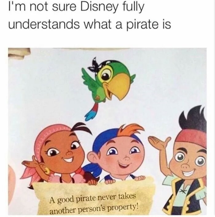 "Caption that reads, ""I'm not sure Disney fully understands what a pirate is"" above a pic of Disney pirate cartoon characters holding up a sign that reads, ""A good pirate never takes another person's property!"""