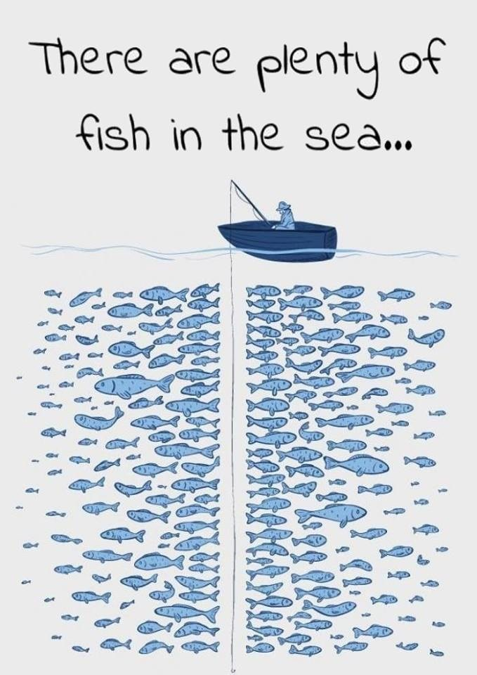 pic of person's fishing line getting ignored in a sea full of fish