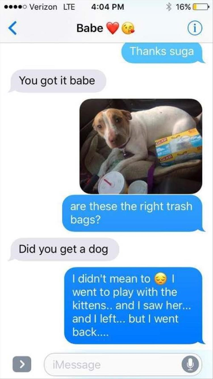 Product - o Verizon LTE 4:04 PM 16% (i Babe Thanks suga You got it babe GAD are these the right trash bags? Did you get a dog I didn't mean to went to play with the kittens.. and I saw he... and I left... but I went back.... > iMessage