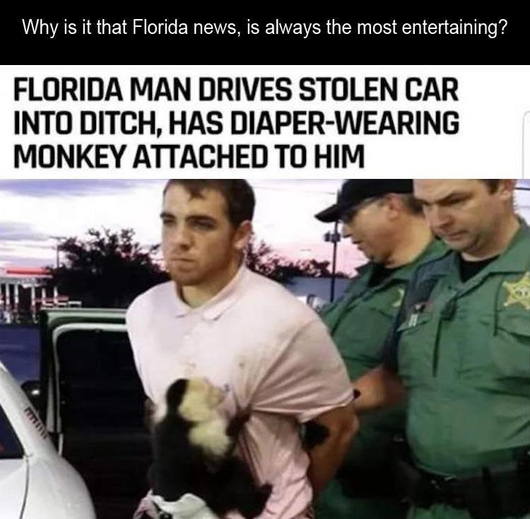Photo caption - Why is it that Florida news, is always the most entertaining? FLORIDA MAN DRIVES STOLEN CAR INTO DITCH, HAS DIAPER-WEARING MONKEY ATTACHED TO HIM
