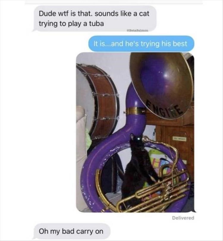 Purple - Dude wtf is that. sounds like a cat trying to play a tuba eDetailnen It is...and he's trying his best NGI Delivered Oh my bad carry on