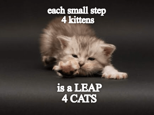 Each Small Step 4 Kittens
