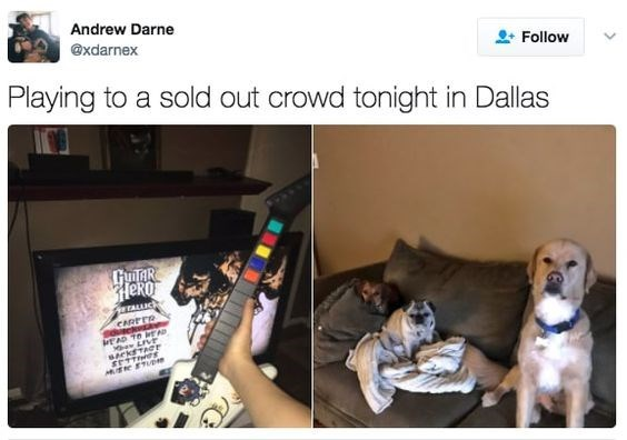 wholesome meme - Canidae - Andrew Darne @xdarnex Follow Playing to a sold out crowd tonight in Dallas GUIAR HeRO TALLUCk CRRTER The MUe ETp