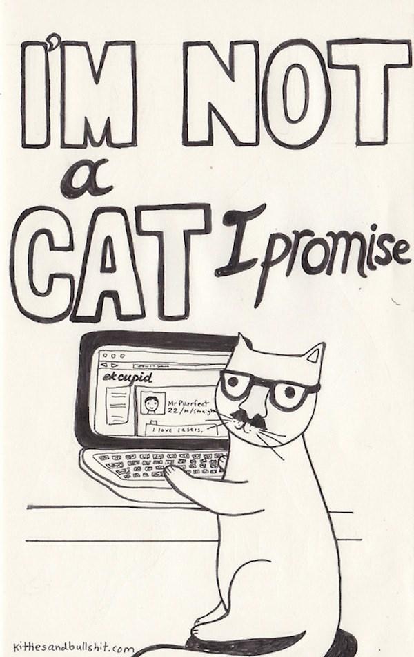 classic song cat - Text - IM NOT LMU CAT TPOMi Promise ekcupidl Mr Parrfect 22/m/shi eve 145s Kitiesandbullshit.com