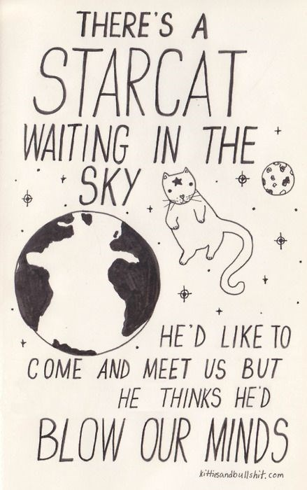 classic song cat - Font - THERE'S A STARCAT WAITING IN THE SKY HE'D LIKE TO COME AND MEET US BUT HE THINKS HE'D BLOW OUR MINDS kitisandbullshit. com