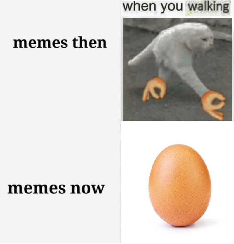 world record egg - Organism - when you walking memes then memes now
