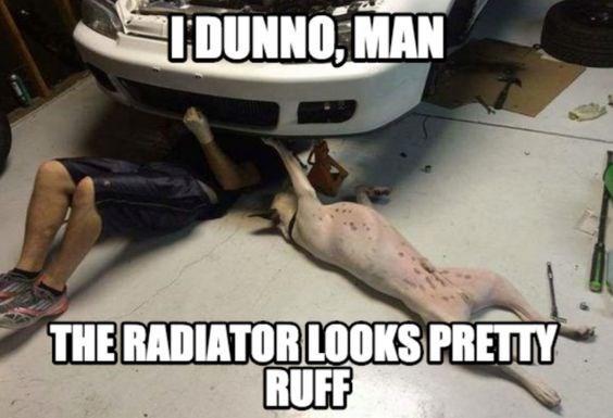 Automotive exterior - IDUNNO MAN THE RADIATOR LOOKS PRETTY RUFF
