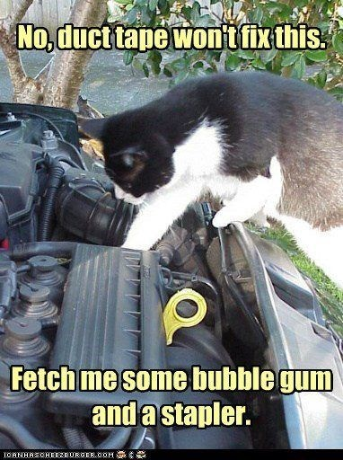 Photo caption - No, duct tape won't fix this Fetch me some bubble gum and a stapler. ICANHASCHEE2E 0RSER COM