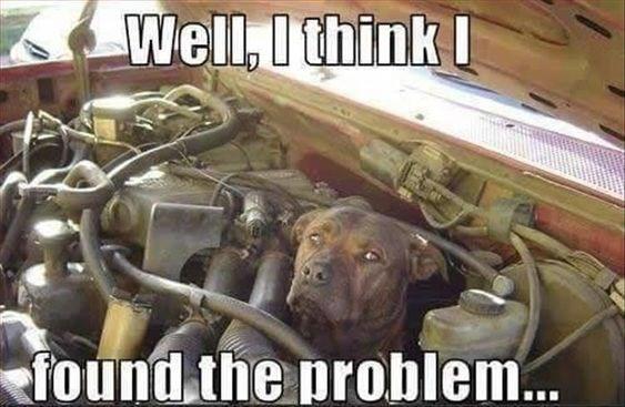 Photo caption - Well,Othink found the problem...
