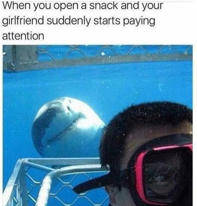 meme about your girlfriend suddenly showing interest when you open a snack with pic of a shark peeking behind a swimmer