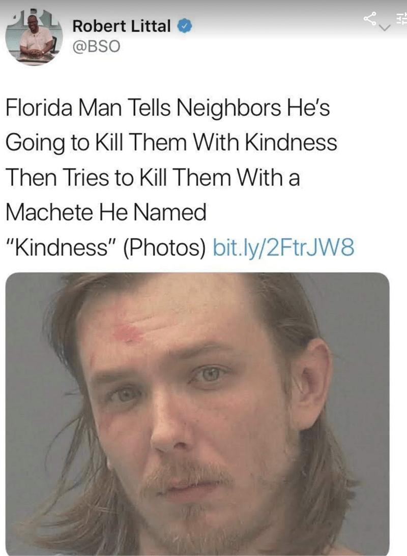 headline about Florida Man making a pun