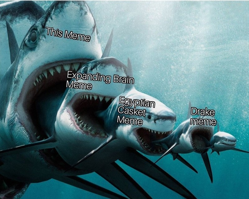 meta meme about shark memes being better than all other comparison memes