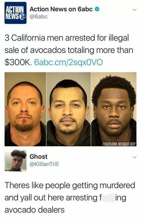"""Headline that reads, """"Three California men arrested for illegal sale of avocados totaling more than $300k;"""" someone comments below, """"There's like people getting murdered and y'all out here arresting f*cking avocado dealers"""""""