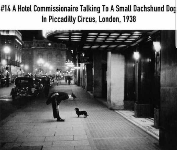 Text - #14 A Hotel Commissionaire Talking To A Small Dachshund Dog In Piccadilly Circus, London, 1938