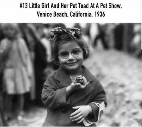 Photograph - #13 Little Girl And Her Pet Toad At A Pet Show. Venice Beach, California, 1936