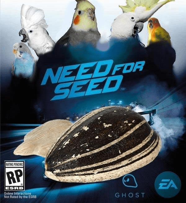 animal meme - Bird - NEEDFOR SEED TM RATING PENDING RP EA ESRB Online Interactions Not Rated by the ESRB GHOST