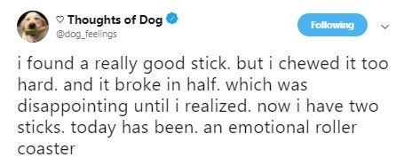 """Tweet that reads, """"I found a really good stick but I chews it too hard and it broke in half, which was disappointing until I realized now I have two sticks. Today has been an emotional roller coaster"""""""