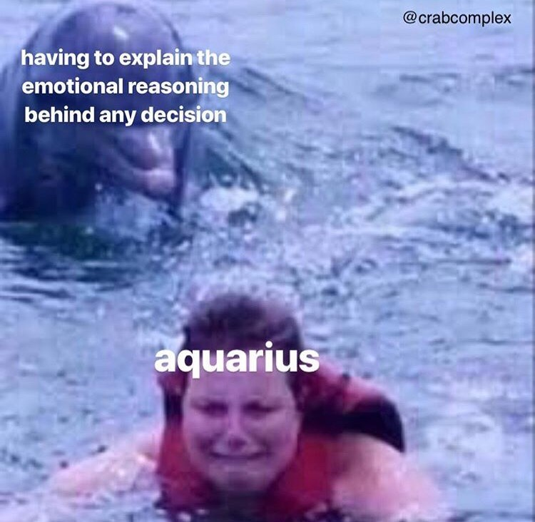 Water - @crabcomplex having to explain the emotional reasoning behind any decision aquarius