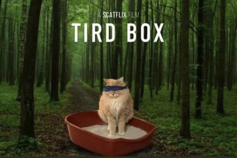 meme - Mammal - SCATFLIX FILM TIRD BOX