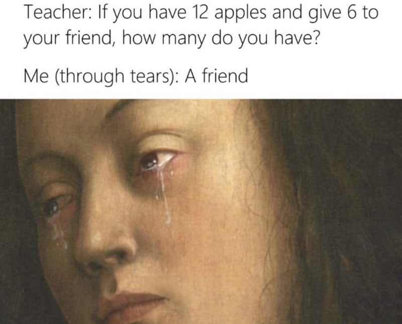 meme - Face - Teacher: If you have 12 apples and give 6 to your friend, how many do you have? Me (through tears): A friend