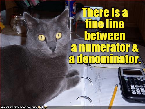 caturday meme of a cat sitting near a calculator and math homework