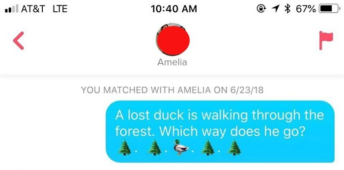 """Tinder message that reads, """"A lost duck is walking through the forest. Which way should he go?"""""""