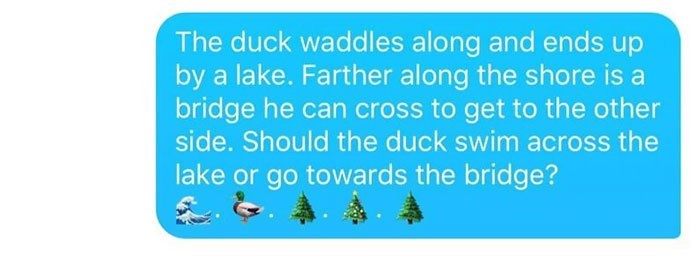 """Tinder message telling a story about the duck ending up by a lake; he asks girl whether the duck should swim across the lake or go over the bridge"""""""