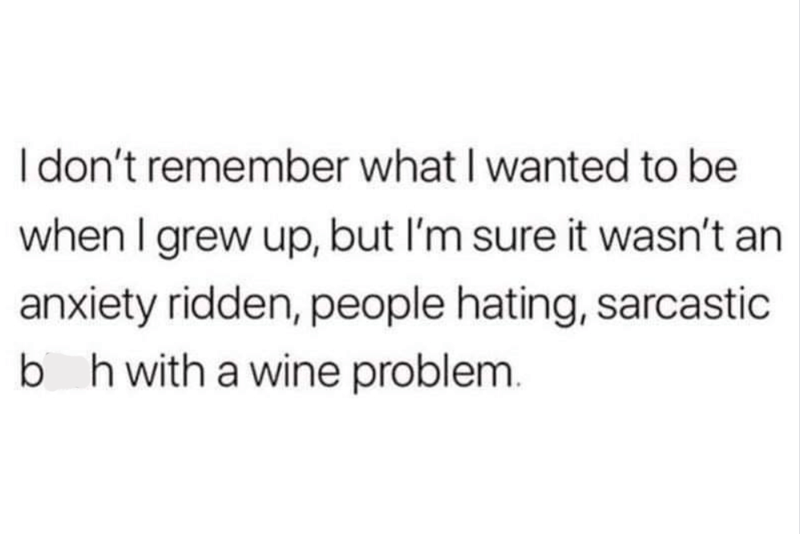 Text - Idon't remember what I wanted to be when I grew up, but I'm sure it wasn't an anxiety ridden, people hating, sarcastic hwith a wine problem. b