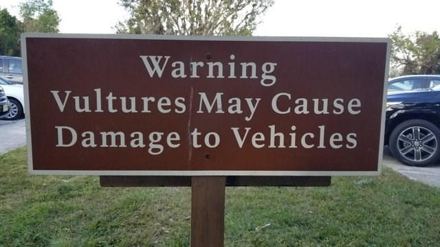 Sign - Warning Vultures May Cause Damage to Vehicles