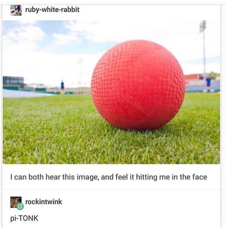 "Pic of a red rubber ball with Tumblr text that reads, ""I can both hear this image and feel it hitting me in the face;"" someone comments below, ""pi-TONK"""