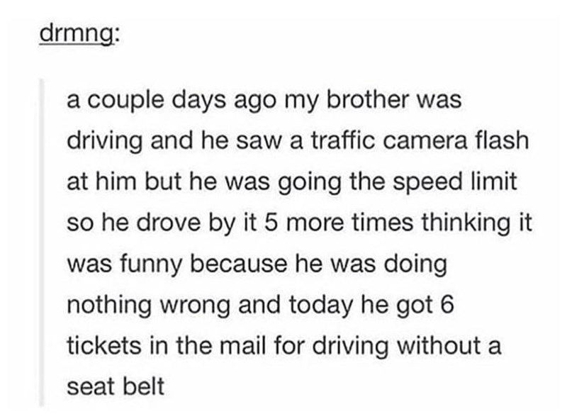 Text - drmng: a couple days ago my brother was driving and he saw a traffic camera flash at him but he was going the speed limit so he drove by it 5 more times thinking it was funny because he was doing nothing wrong and today he got 6 tickets in the mail for driving without a seat belt