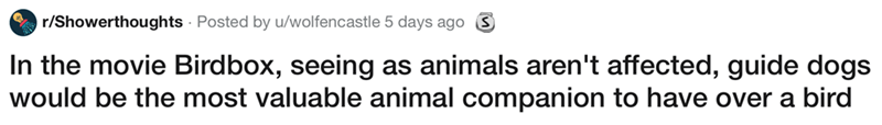 showerthought - Text - r/Showerthoughts Posted by u/wolfencastle 5 days ago S In the movie Birdbox, seeing as animals aren't affected, guide dogs would be the most valuable animal companion to have over a bird