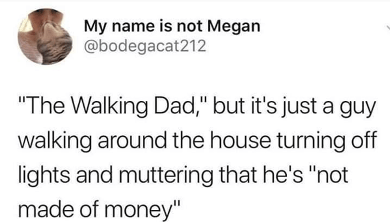 "Text - My name is not Megan @bodegacat212 ""The Walking Dad,"" but it's just a guy walking around the house turning off lights and muttering that he's ""not made of money"""