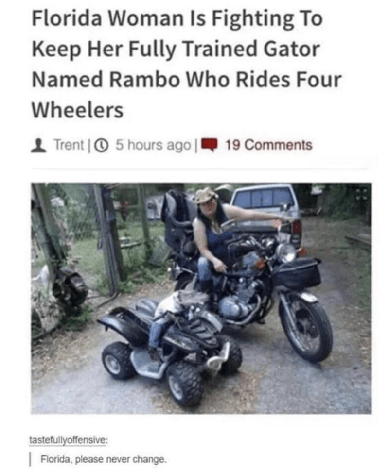 Motor vehicle - Florida Woman Is Fighting To Keep Her Fully Trained Gator Named Rambo Who Rides Four Wheelers Trent O5 hours ago 19 Comments tastefullyoffensive: Florida, please never change.