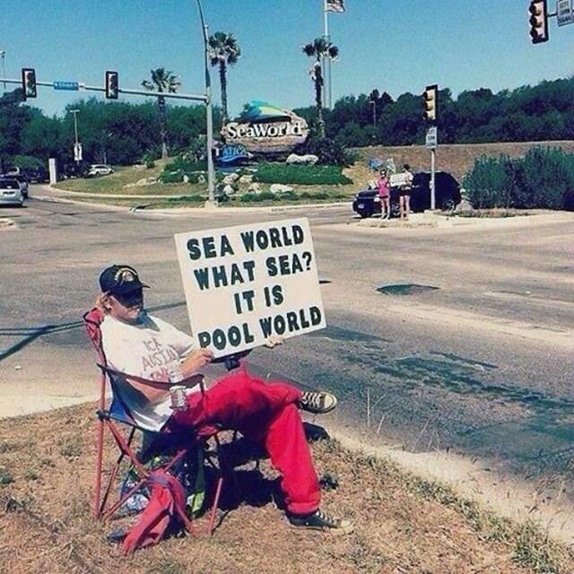 literal jokes - Sky - SeaWorld SEA WORLD WHAT SEA? IT IS ASIA DOOL WORLD