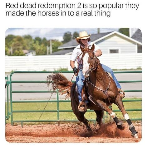 dank meme - Horse - Red dead redemption 2 is so popular they made the horses in to a real thing