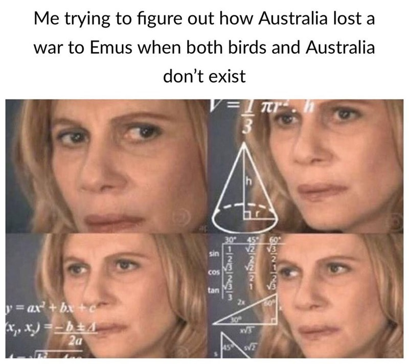 dank meme - Face - Me trying to figure out how Australia lost a war to Emus when both birds and Australia don't exist V=Tr h 30 45 2 1 sin 2 V3 2 Cos tan 2x =ax+bx+c 30 2a 45 s