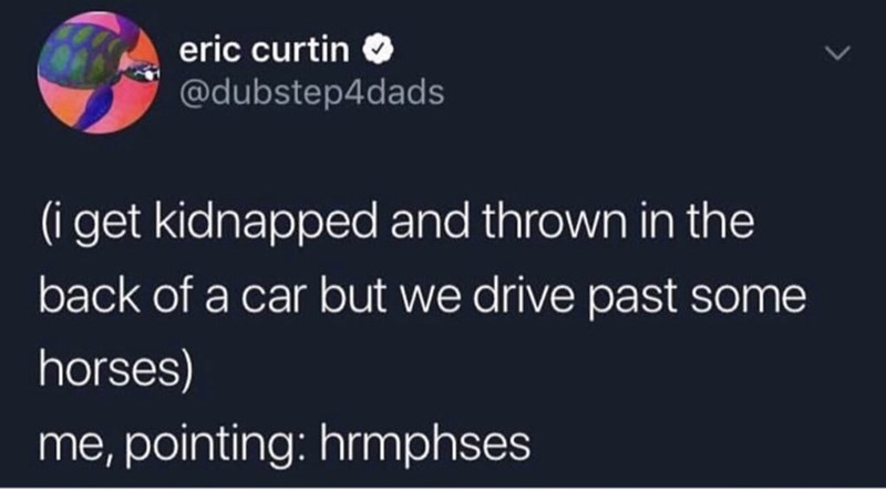 Text - eric curtin @dubstep4dads (i get kidnapped and thrown in the back of a car but we drive past some horses) me,pointing: hrmphses