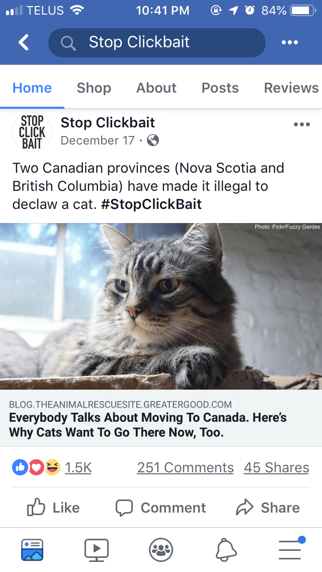 Cat - 84% TELUS 10:41 PM Stop Clickbait Shop About Reviews Home Posts CLICK Stop Clickbait BAIT STOP December 17 Two Canadian provinces (Nova Scotia and British Columbia) have made it illegal to declaw a cat. #StopClickBait Photo: Fickr/Fuzzy Gerdes BLOG.THEANIMALRESCUESITE.GREATERGOOD.COM Everybody Talks About Moving To Canada. Here's Why Cats Want To Go There Now, Too. 251 Comments 45 Shares 1.5K Like Share Comment